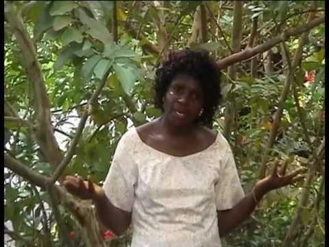 MARY MANDI – Explosion 2004 (Gospel)